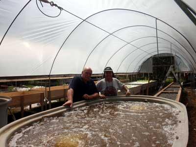 Practical Aquaponics FloMedia build