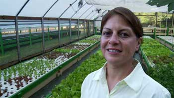 Gina Cavaliero is expanding her 1,000 square foot floating raft system to cater for demand Murray Hallam Practical Aquaponics.