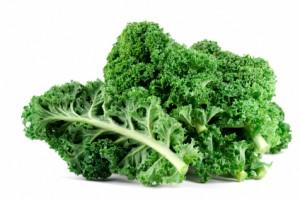 Aquaponics Kale